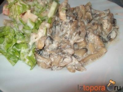 Овощные грибы